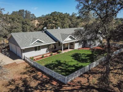 Grass Valley Single Family Home For Sale: 19890 Perimeter Road