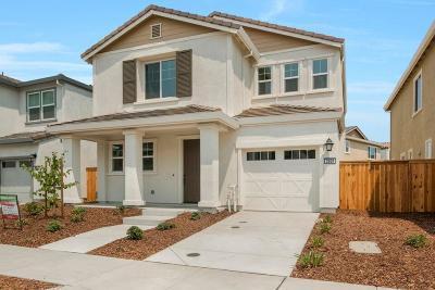 Single Family Home For Sale: 3808 Amelia Rose Way