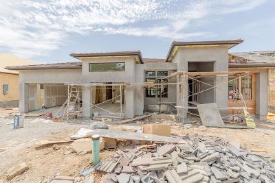 Folsom Single Family Home For Sale: 681 Sundahl Drive