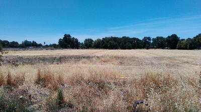 Stockton CA Residential Lots & Land For Sale: $295,000