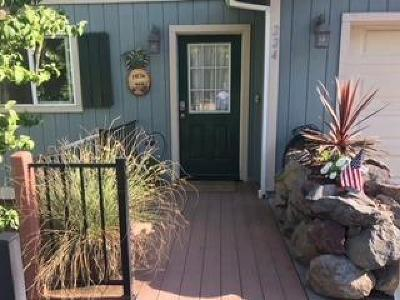 Colfax Single Family Home For Sale: 224 Rising Sun Road