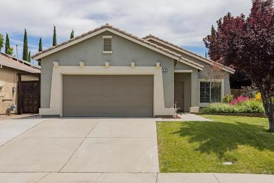 West Sacramento Single Family Home For Sale: 3178 Saginaw Street