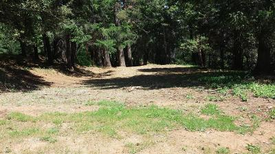 Foresthill Residential Lots & Land For Sale: 15 Mosquito Ridge Road