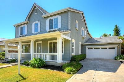 Mountain House Single Family Home For Sale: 102 Brett Avenue