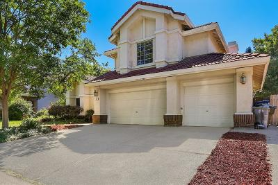 Folsom Single Family Home For Sale: 283 Silberhorn Drive