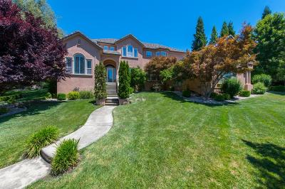 Granite Bay Single Family Home For Sale: 8815 Vista De Lago Court