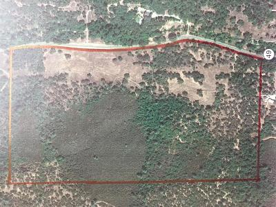 Amador County Commercial Lots & Land For Sale: 93 Highway 49