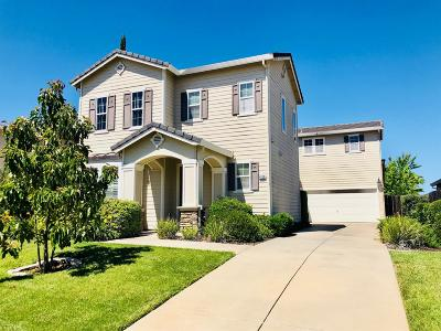 El Dorado Hills Single Family Home For Sale: 4120 Monte Verde Drive