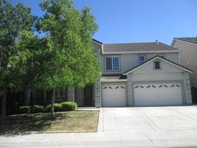 Single Family Home For Sale: 3006 Palmate Way