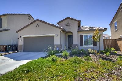 Elk Grove Single Family Home For Sale: 10086 Knotts Drive