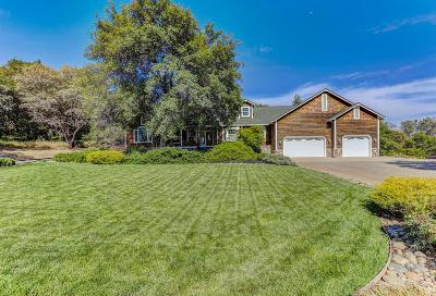 Penn Valley Single Family Home For Sale: 14399 Maidu Trail