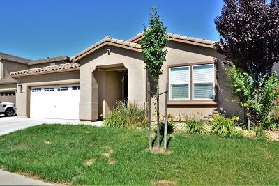 Elk Grove Single Family Home For Sale: 4904 Tusk Way