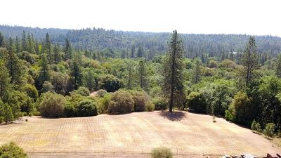 Garden Valley CA Residential Lots & Land For Sale: $119,000
