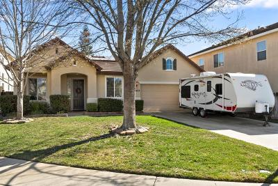 Elk Grove Single Family Home For Sale: 8623 Lupone Court