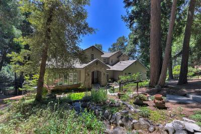 Pollock Pines CA Single Family Home For Sale: $899,000