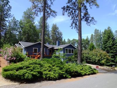 Grass Valley Single Family Home For Sale: 12033 Hanley Drive