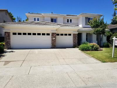 Sacramento Single Family Home For Sale: 1521 Danbrook Drive