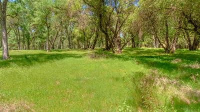 Diamond Springs Residential Lots & Land For Sale: 5909 Cerrito Road