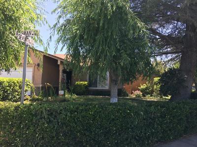 Ripon Single Family Home For Sale: 956 Busman Drive