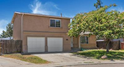 Manteca Single Family Home For Sale: 846 Del Monte Court