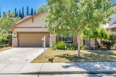 Tracy Single Family Home For Sale: 2270 Gibralter Lane