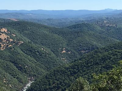 Nevada County Commercial Lots & Land For Sale: 15402 Skaith