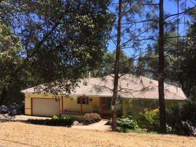 Grass Valley Single Family Home For Sale: 20571 Johnston Dr.