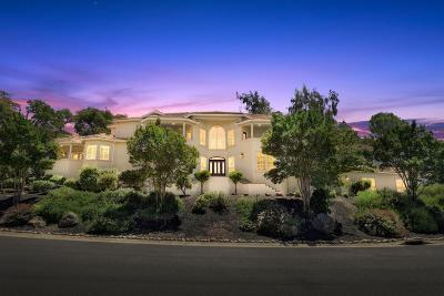 El Dorado Hills Single Family Home For Sale: 1636 Carnegie Way
