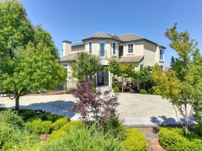 El Dorado Hills Single Family Home For Sale: 3010 Woodleigh Court