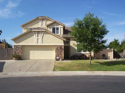 Bangor, Berry Creek, Chico, Clipper Mills, Gridley, Oroville Single Family Home For Sale: 1735 Blue Heron