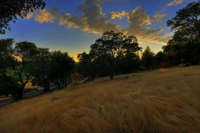 Meadow Vista Residential Lots & Land For Sale: 17239 Winchester Club Drive