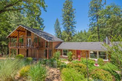 El Dorado County Single Family Home For Sale: 5820 Pennyroyal Drive
