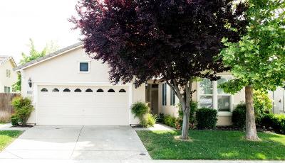 Roseville Single Family Home For Sale: 1835 Flint Street