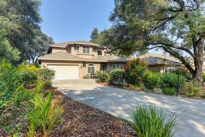 Fair Oaks Single Family Home For Sale: 5229 Sir Lancelot Lane