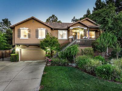 El Dorado Hills Single Family Home For Sale: 3728 Waldwick Circle