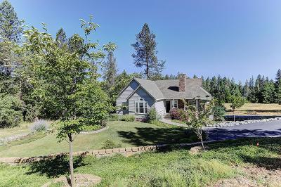 Nevada City Single Family Home For Sale: 10714 Pittsburg Road