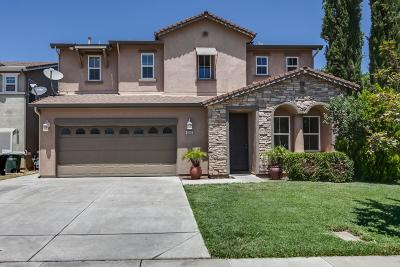 Modesto Single Family Home For Sale: 2209 Cimarron Hills Drive