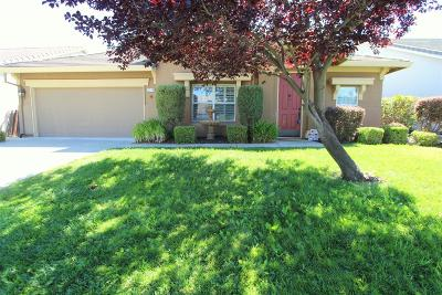 Rocklin Single Family Home For Sale: 5374 Brookfield Circle