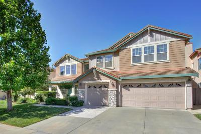 Elk Grove Single Family Home For Sale: 9736 Harrier Way
