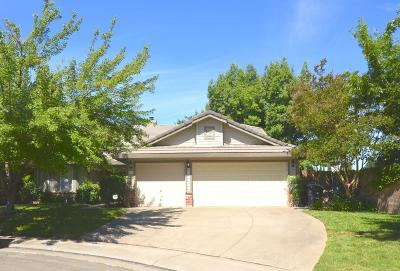 Antelope Single Family Home For Sale: 8161 Chimango Court