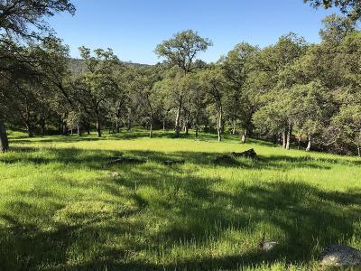 Placer County Commercial Lots & Land For Sale: North Kilaga Springs Road