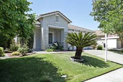Sacramento Single Family Home For Sale: 411 Rick Heinrich Circle