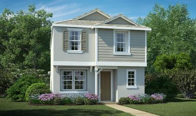Sacramento Single Family Home For Sale: 3849 Amelia Rose Way
