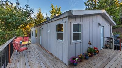 Placerville Single Family Home For Sale: 5131 Victory Mine Rd