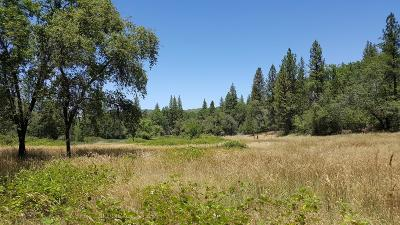 Yuba County Residential Lots & Land For Sale: 10424 Maidu Trail