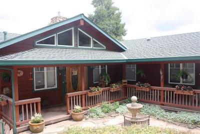 Pioneer Single Family Home For Sale: 16722 Alpine Drive