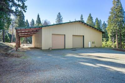 Amador County Residential Lots & Land For Sale: 19538 Deerwood Dr