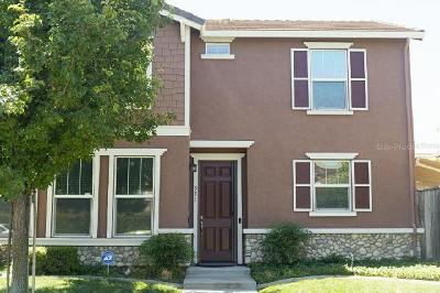 Sacramento Single Family Home For Sale: 321 Picasso Circle