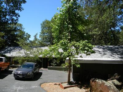 Grass Valley Single Family Home For Sale: 11419 Alta Sierra Drive