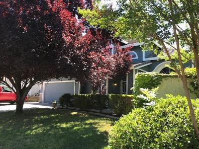 Folsom Single Family Home For Sale: 152 Lembi